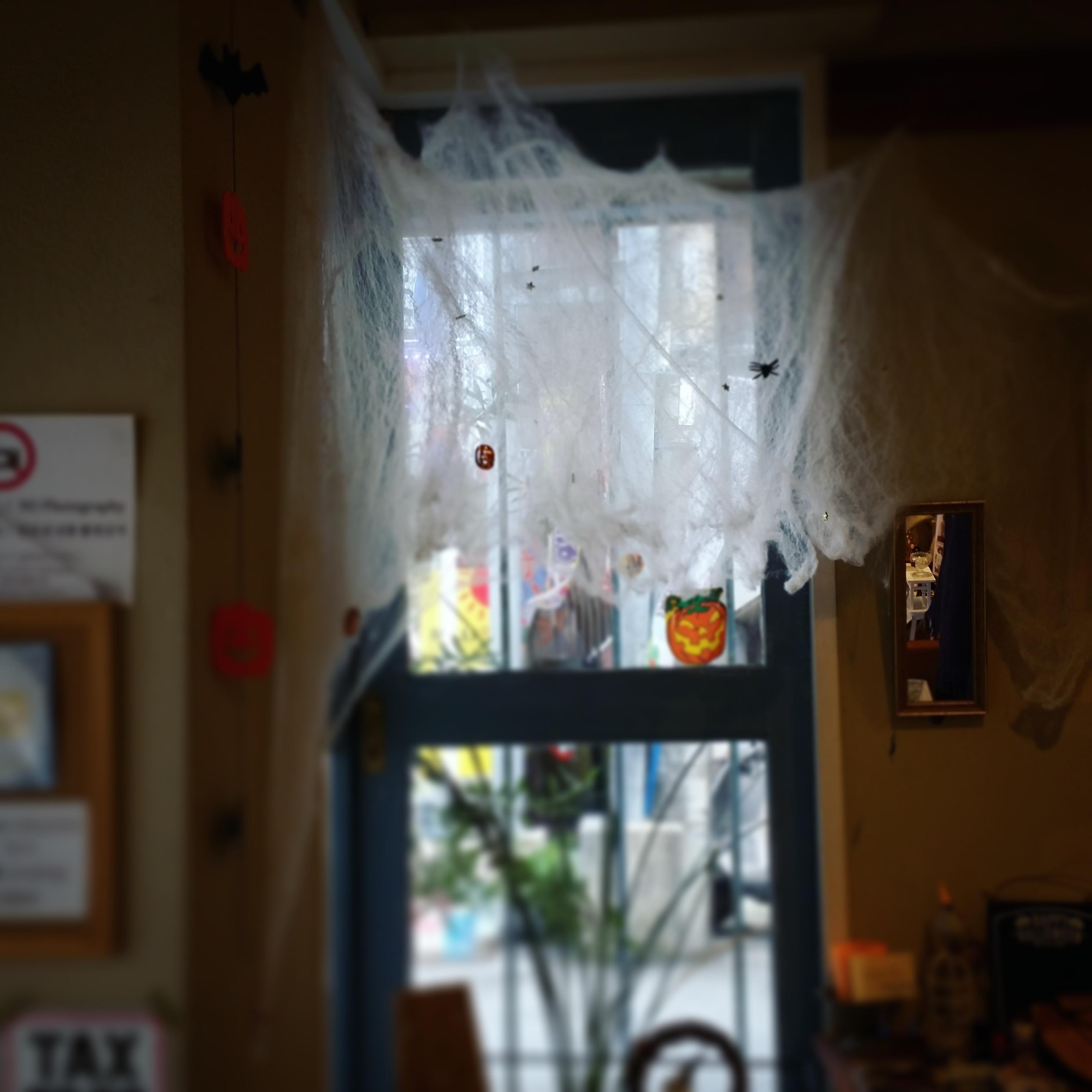 蜘蛛の巣 Halloween pumpkin ジャックオランタン コウモリ