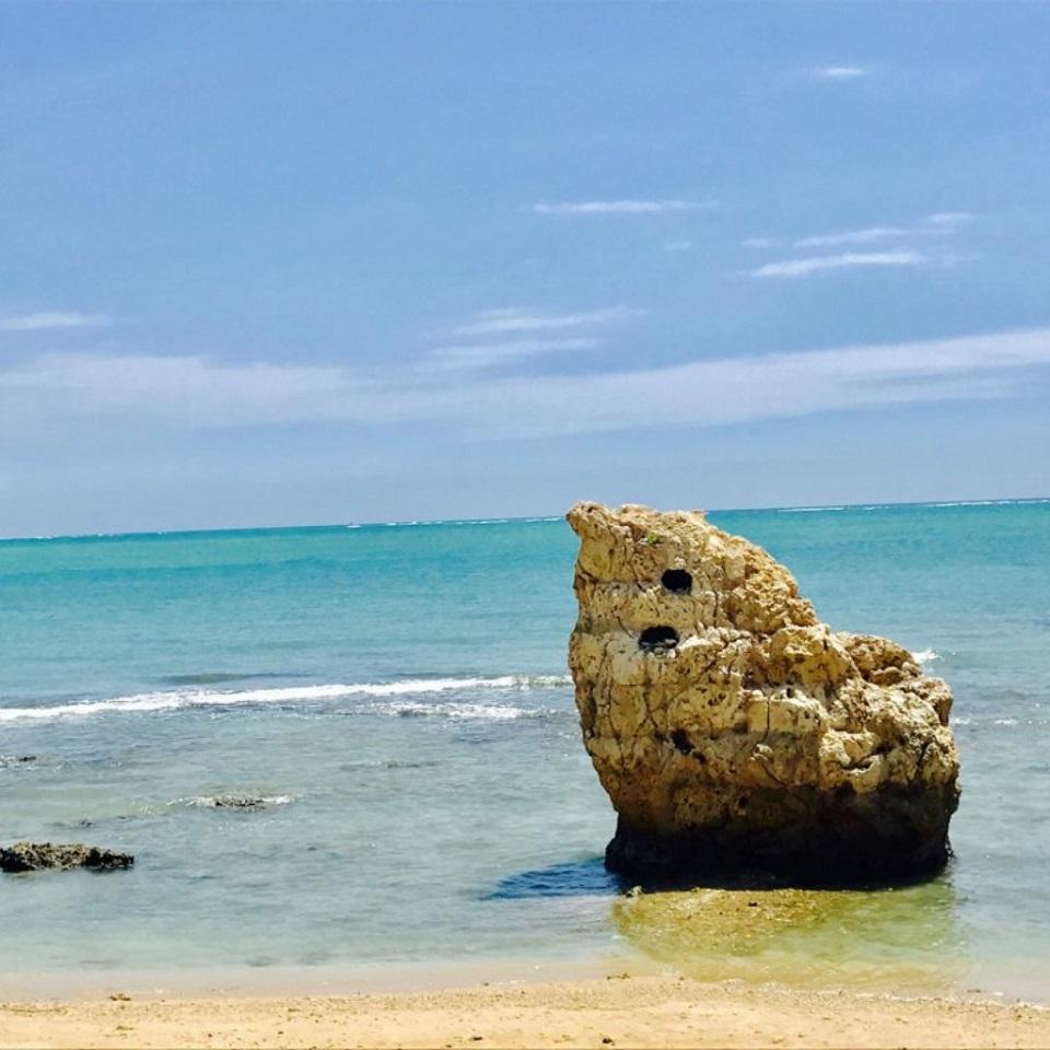 海 ウミカジテラス 子宝岩 散歩 海岸